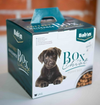 Babin Box Chiot Medium Junoir (набор для щенка)